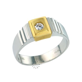 Ring 14ct Whitegold and Gold