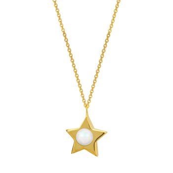 Necklace with star 14ct gold